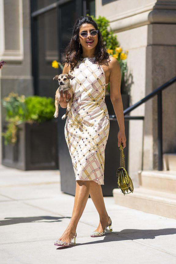 Priyanka Chopra wore Bottega Veneta .ph by Gotham