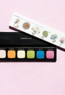 Fresh Picked Eyeshadow Palette Lime Life by Alcone
