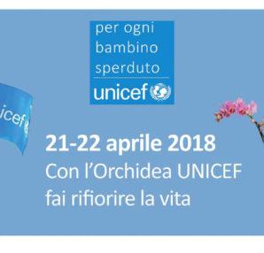 Banner-Orchidea-Unicef
